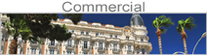 Commercial Property Tax Services